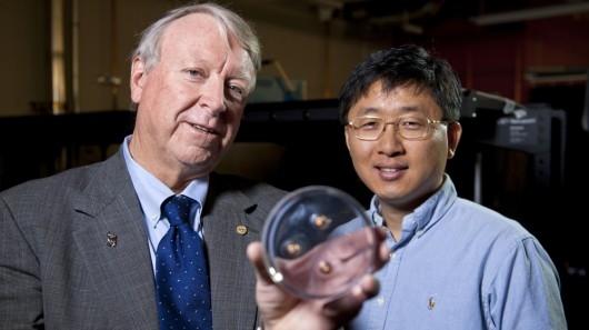 MIT: nowa kamizelka kuloodporna o grubości kartki papieru