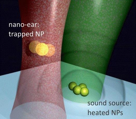 Nano ucho usłyszy skradające się wirusy