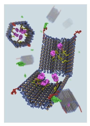 Nanorobot w walce z nowotworami?