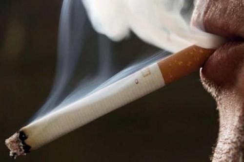 Aplikacja na smartfony pomaga rzucić palenie?