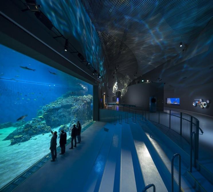 W Danii powstało największe w Europie Północnej otwarte akwarium
