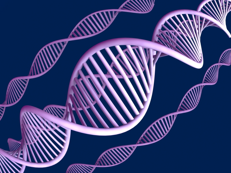 Po co komu DNA, skoro mamy już XNA?