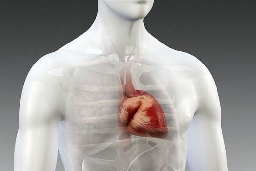 Jak kontrolować serce za pomocą światła?