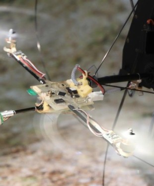 insect-eye-for-drones-1