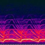 1024px-sirenspectrogram