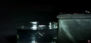 robobee-swim-1