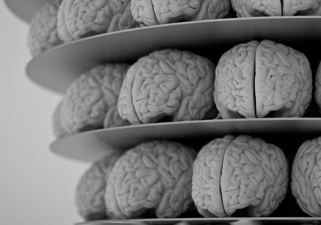"""""""Trening mózgu"""" nic nie daje?"""