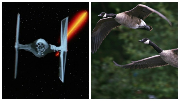 tie-fighter-and-geese