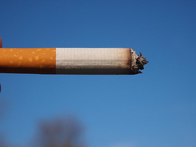 Co można zrobić z 1 kg niedopałków papierosów?