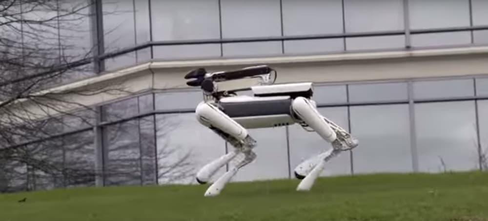 spotmini-robot-6